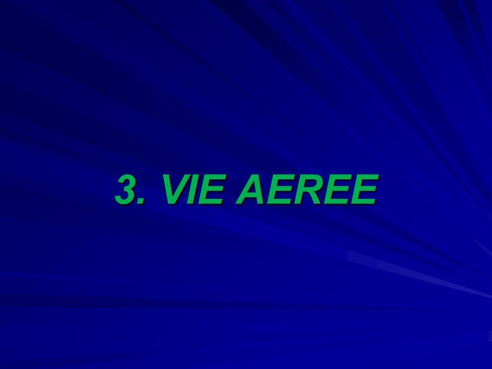 3. VIE AEREE