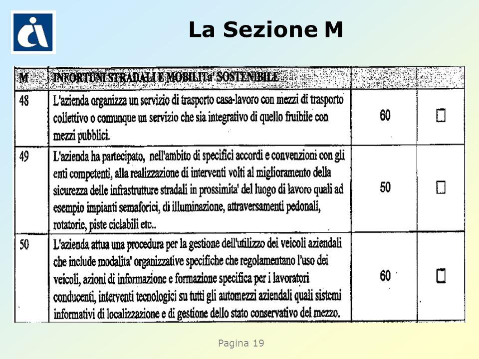 Pagina 19 La Sezione M