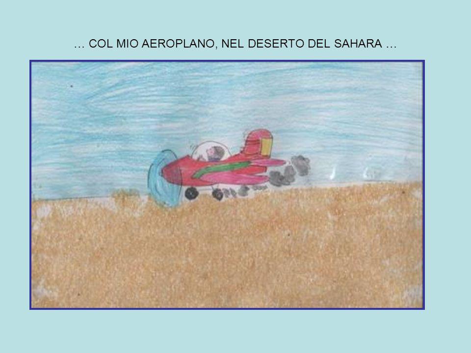 … COL MIO AEROPLANO, NEL DESERTO DEL SAHARA …