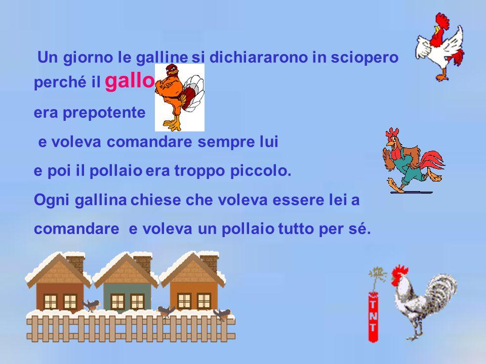 Un giorno le galline si dichiararono in sciopero perché il gallo era prepotente e voleva comandare sempre lui e poi il pollaio era troppo piccolo. Ogn