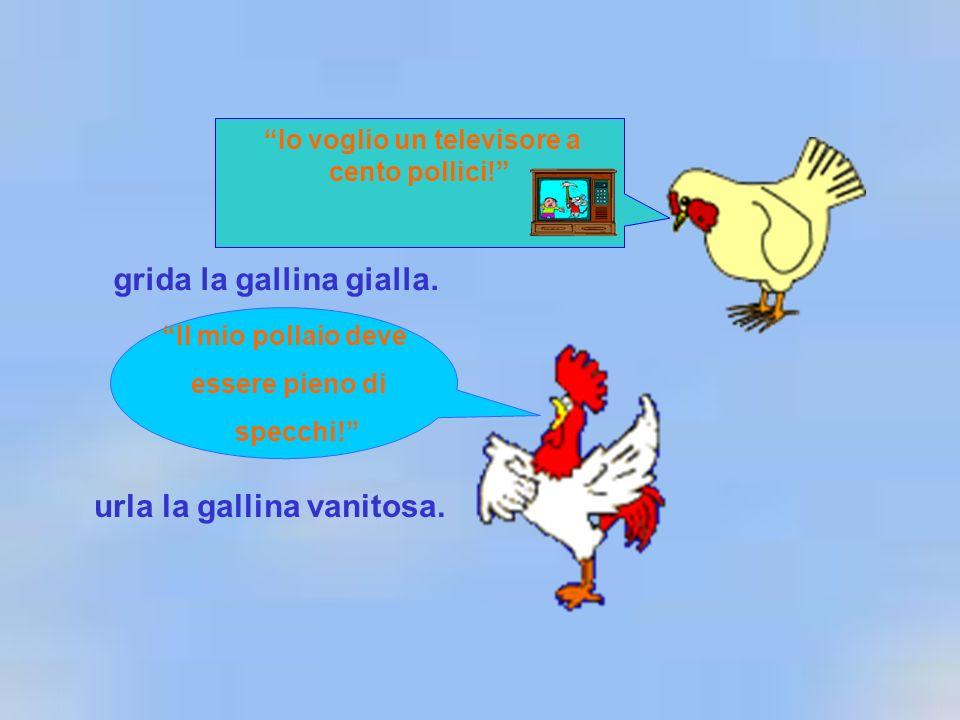 Io voglio un televisore a cento pollici! grida la gallina gialla. Il mio pollaio deve essere pieno di specchi! urla la gallina vanitosa.