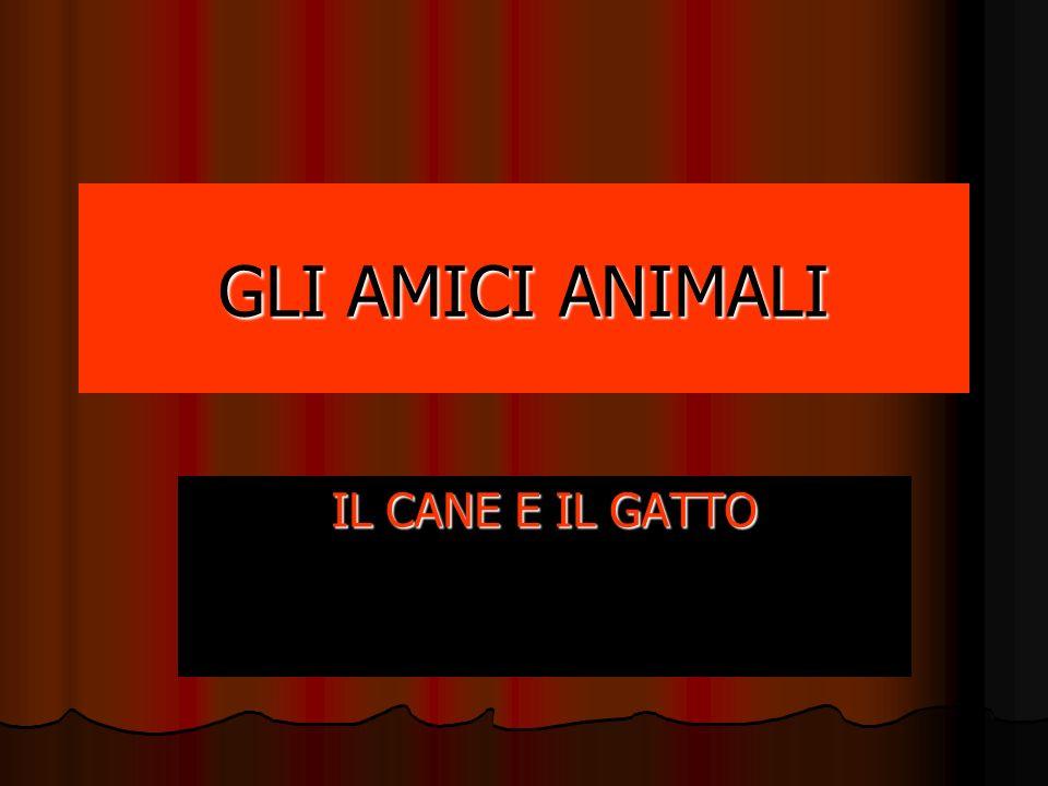 GLI AMICI ANIMALI IL CANE E IL GATTO