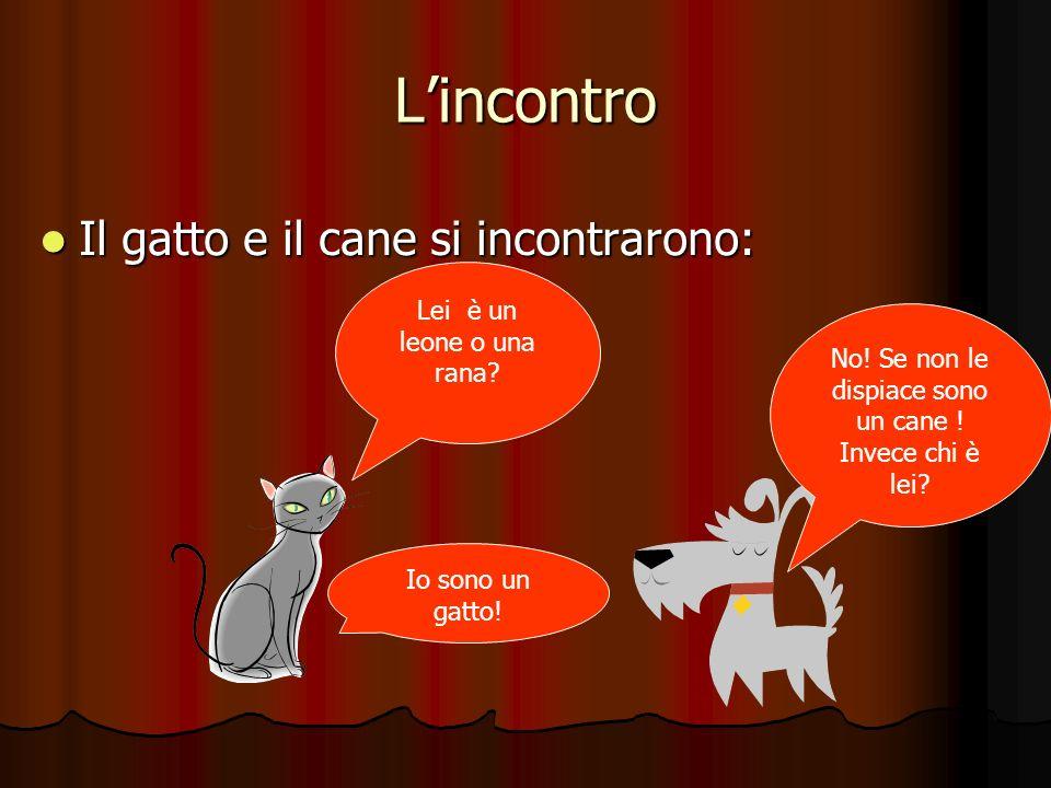 Lincontro Il gatto e il cane si incontrarono: No! Se non le dispiace sono un cane ! Invece chi è lei? Lei è un leone o una rana? Io sono un gatto!