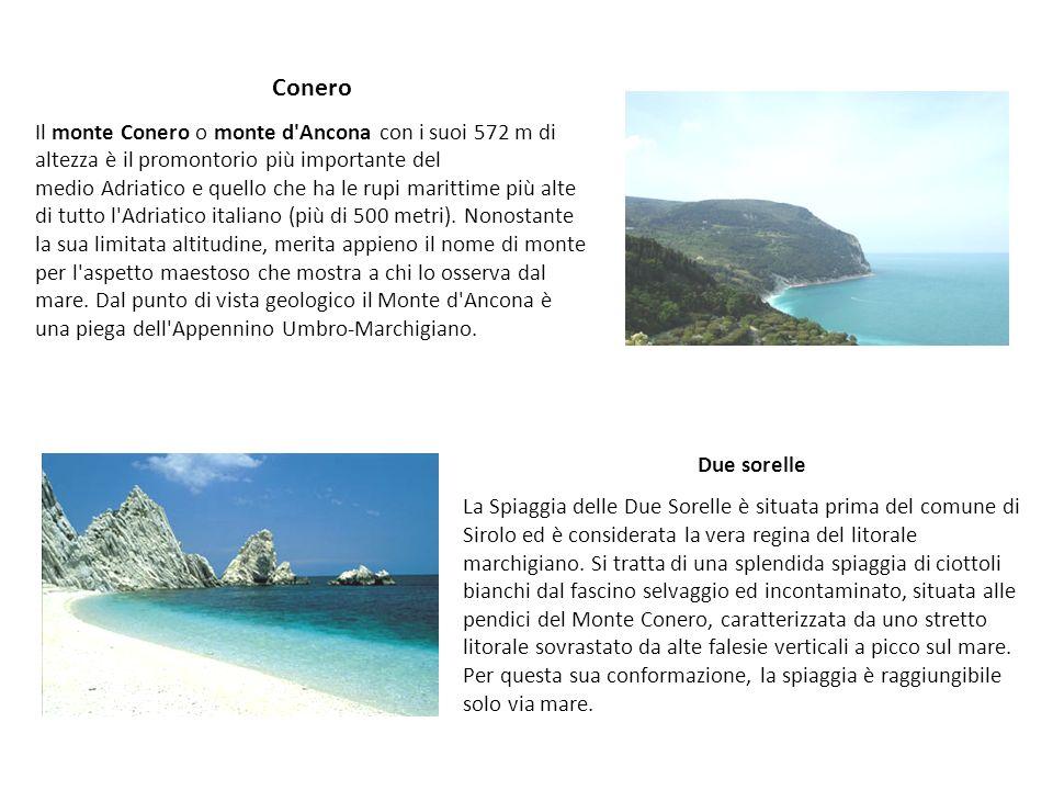 Conero Il monte Conero o monte d'Ancona con i suoi 572 m di altezza è il promontorio più importante del medio Adriatico e quello che ha le rupi maritt