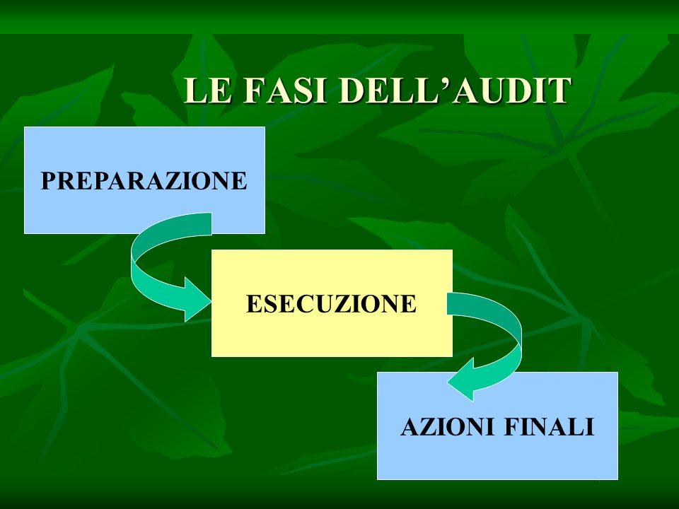 LE FASI DELLAUDIT PREPARAZIONE ESECUZIONE AZIONI FINALI