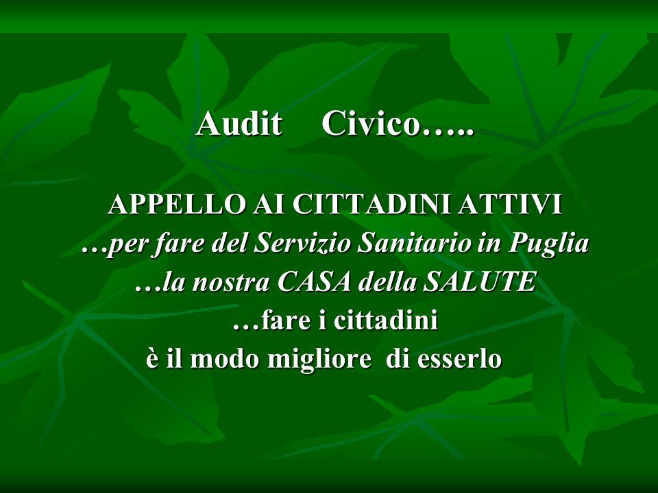 Audit Civico…..