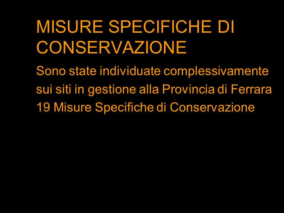 MISURE SPECIFICHE DI CONSERVAZIONE Sono state individuate complessivamente sui siti in gestione alla Provincia di Ferrara 19 Misure Specifiche di Cons