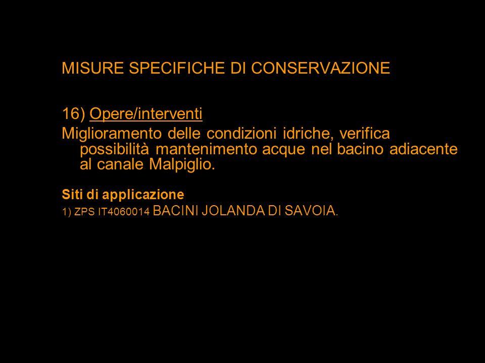 MISURE SPECIFICHE DI CONSERVAZIONE 16) Opere/interventi Miglioramento delle condizioni idriche, verifica possibilità mantenimento acque nel bacino adi