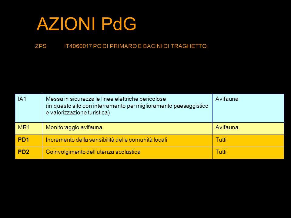 AZIONI PdG ZPSIT4060017 PO DI PRIMARO E BACINI DI TRAGHETTO; IA1Messa in sicurezza le linee elettriche pericolose (in questo sito con interramento per