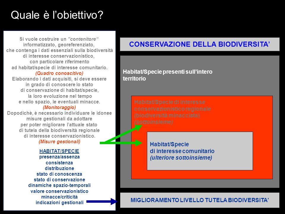 Quale è lobiettivo? Habitat/Specie presenti sullintero territorio Habitat/Specie di interesse conservazionistico regionale (biodiversità minacciata) (