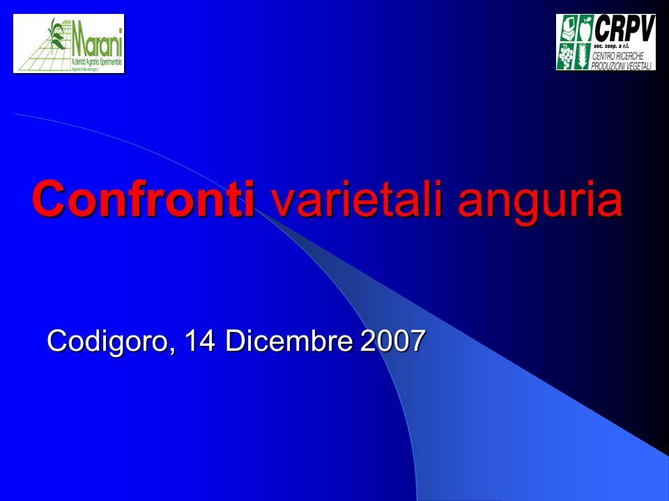 Confronti varietali anguria Codigoro, 14 Dicembre 2007