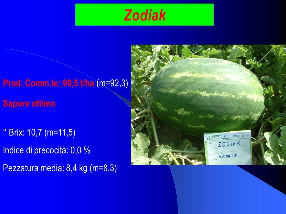 Zodiak Prod. Comm.le: 99,5 t/ha (m=92,3) ° Brix: 10,7 (m=11,5) Pezzatura media: 8,4 kg (m=8,3) Indice di precocità: 0,0 % Sapore ottimo