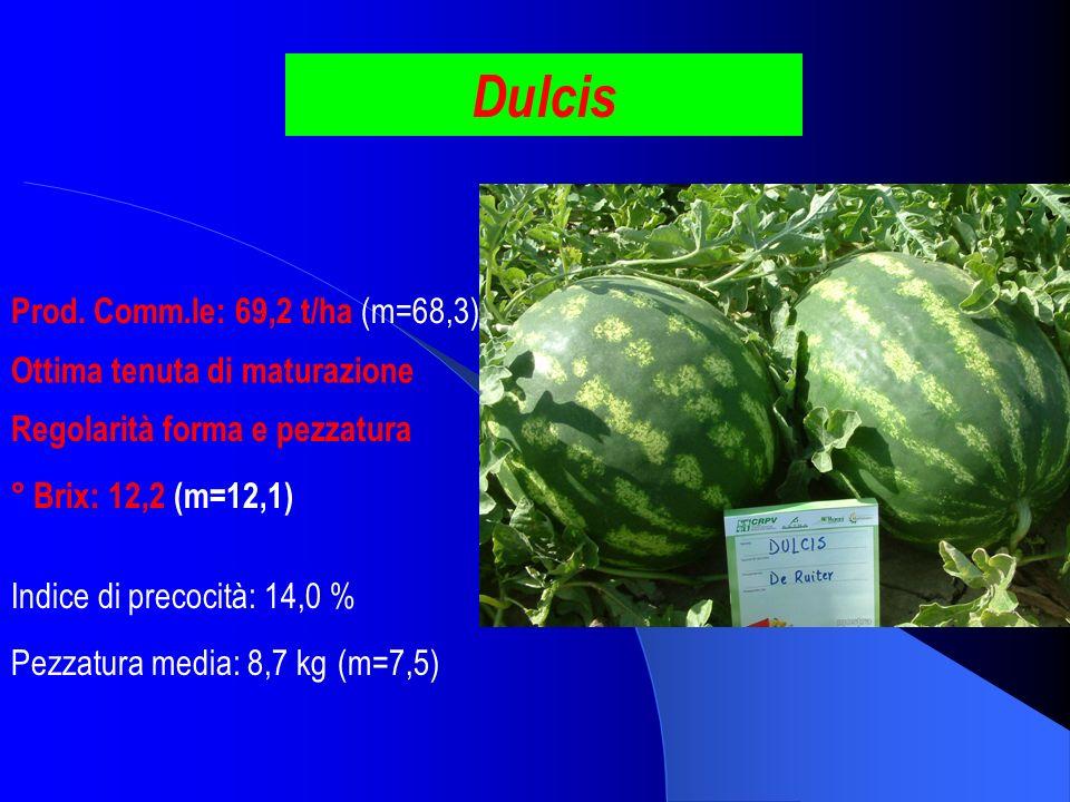 Dulcis Prod. Comm.le: 69,2 t/ha (m=68,3) ° Brix: 12,2 (m=12,1) Pezzatura media: 8,7 kg (m=7,5) Indice di precocità: 14,0 % Regolarità forma e pezzatur
