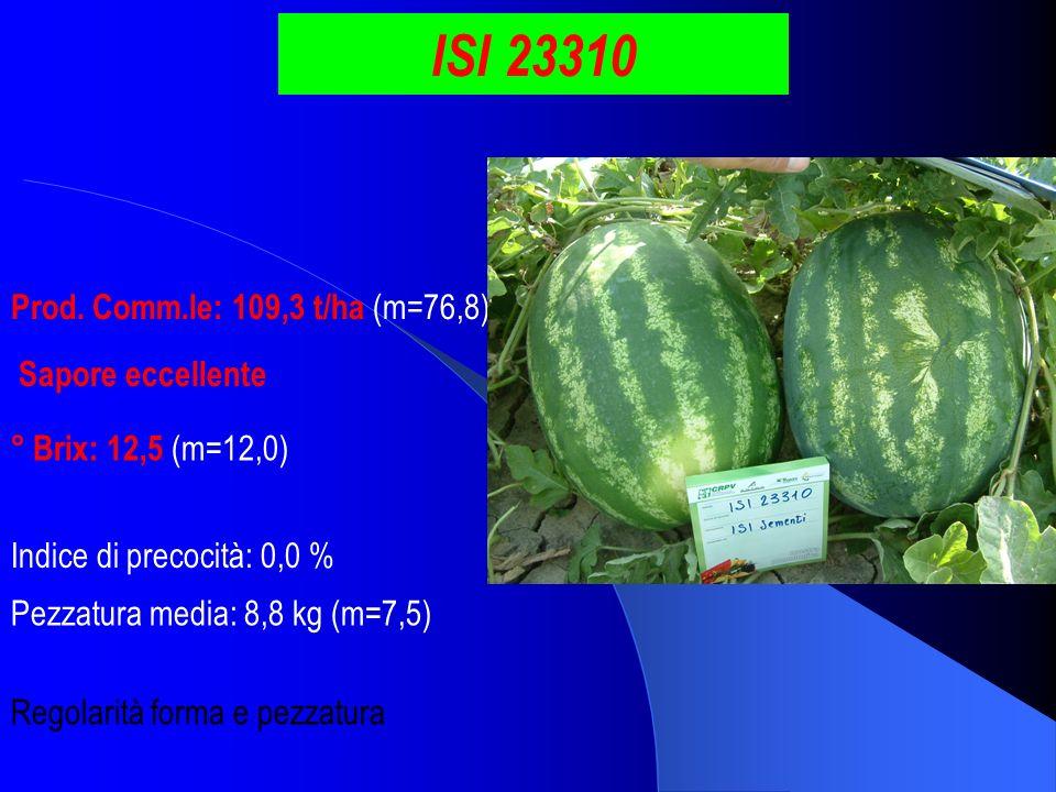 ISI 23310 Prod. Comm.le: 109,3 t/ha (m=76,8) ° Brix: 12,5 (m=12,0) Pezzatura media: 8,8 kg (m=7,5) Indice di precocità: 0,0 % Sapore eccellente Regola