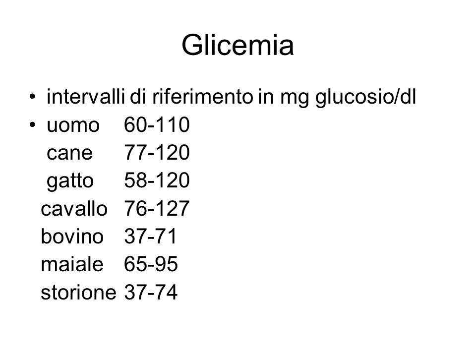 Glicemia intervalli di riferimento in mg glucosio/dl uomo 60-110 cane 77-120 gatto58-120 cavallo76-127 bovino37-71 maiale65-95 storione 37-74