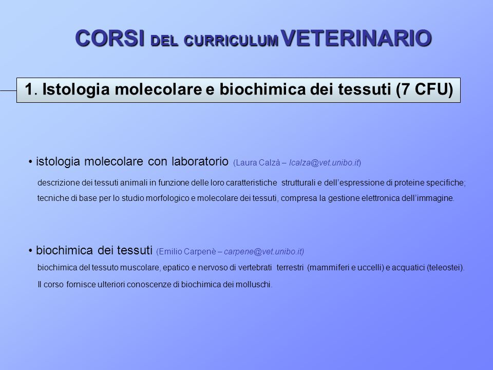 CORSI DEL CURRICULUM VETERINARIO 1. Istologia molecolare e biochimica dei tessuti (7 CFU) istologia molecolare con laboratorio (Laura Calzà – lcalza@v