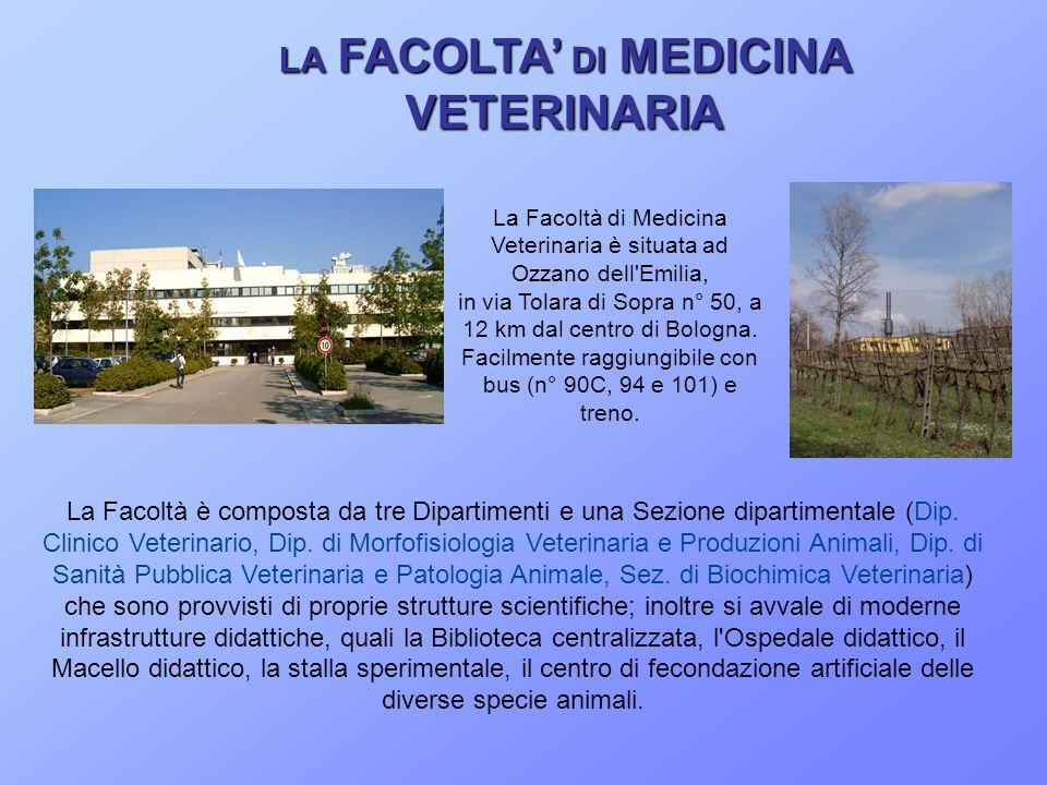 LA FACOLTA DI MEDICINA VETERINARIA La Facoltà è composta da tre Dipartimenti e una Sezione dipartimentale (Dip. Clinico Veterinario, Dip. di Morfofisi