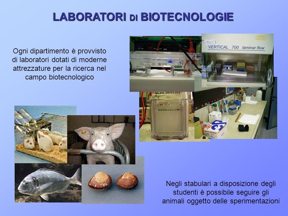 LABORATORI DI BIOTECNOLOGIE LABORATORI DI BIOTECNOLOGIE Negli stabulari a disposizione degli studenti è possibile seguire gli animali oggetto delle sperimentazioni Ogni dipartimento è provvisto di laboratori dotati di moderne attrezzature per la ricerca nel campo biotecnologico