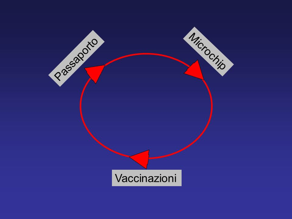 Vaccinazioni Passaporto Microchip