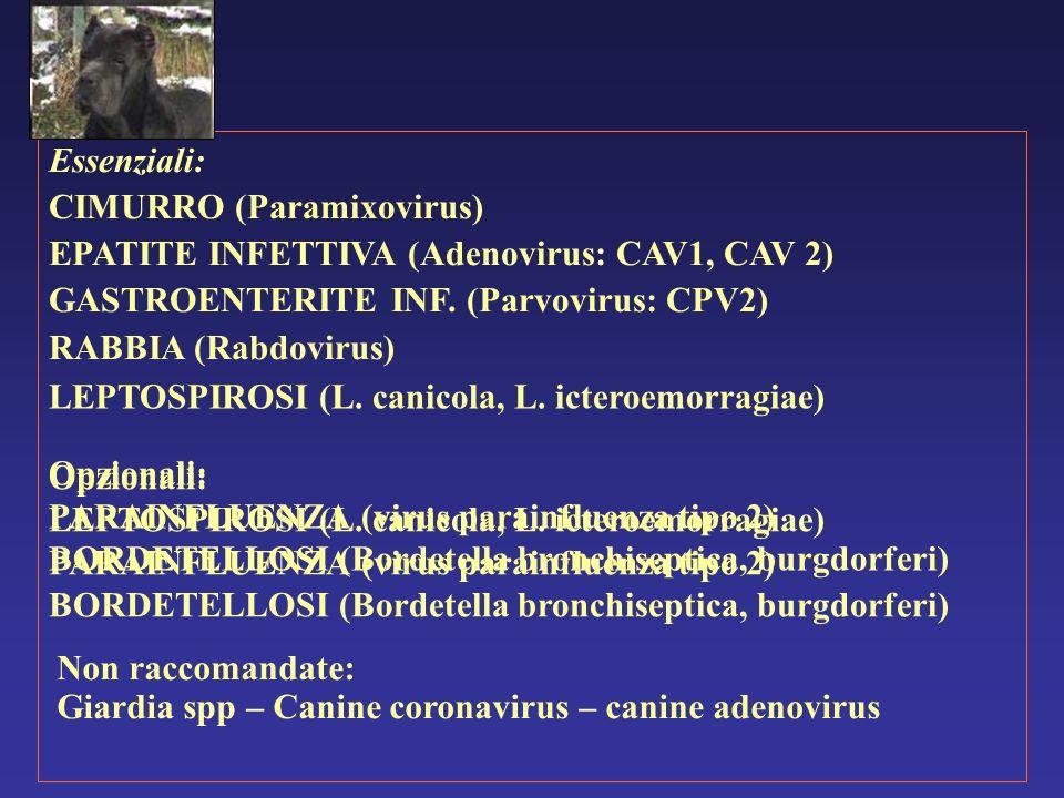 Essenziali: CIMURRO (Paramixovirus) EPATITE INFETTIVA (Adenovirus: CAV1, CAV 2) GASTROENTERITE INF. (Parvovirus: CPV2) RABBIA (Rabdovirus) Opzionali:
