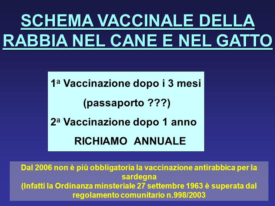 SCHEMA VACCINALE DELLA RABBIA NEL CANE E NEL GATTO 1 a Vaccinazionedopo i 3 mesi (passaporto ???) 2 a Vaccinazionedopo 1 anno RICHIAMO ANNUALE Dal 200