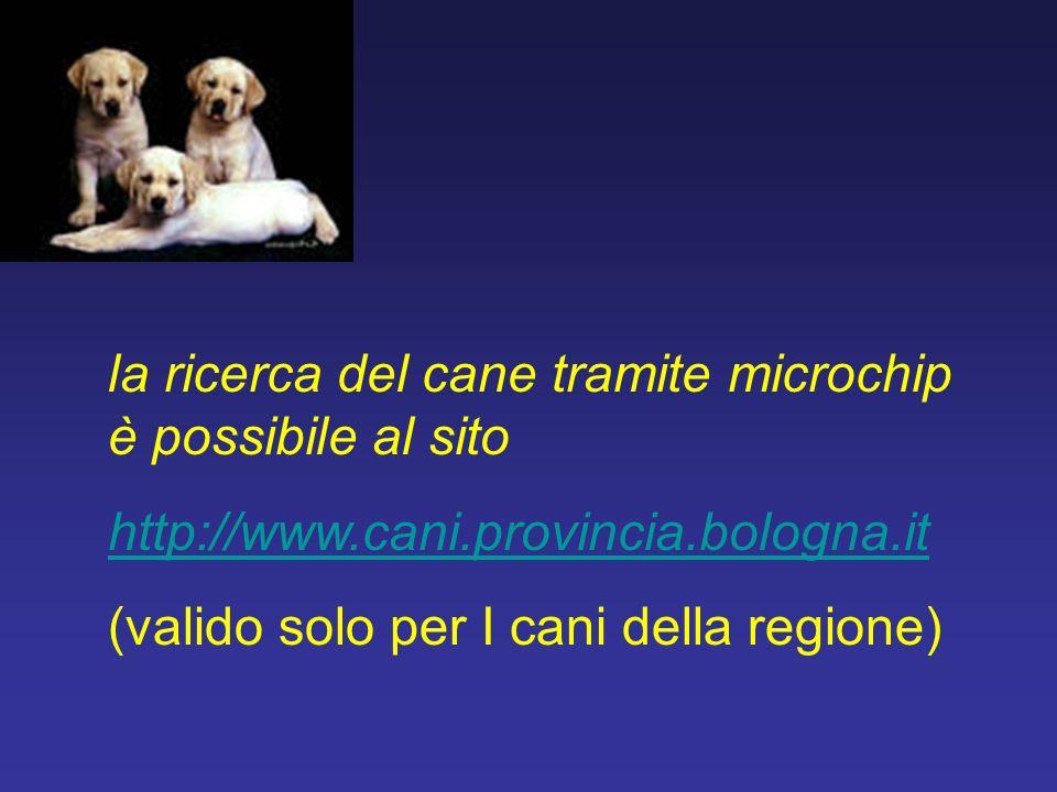 la ricerca del cane tramite microchip è possibile al sito http://www.cani.provincia.bologna.it (valido solo per I cani della regione)
