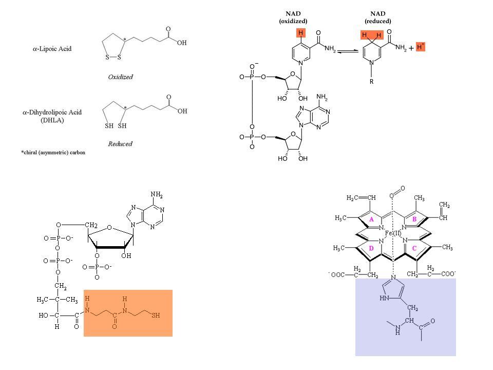Classificazione Enzyme Commission - IUBMB International Union Biochemistry & Molecular Biology IUBMB 6 classi: 1) ossidoreduttasi; 2) transferasi; 3) idrolasi; 4) liasi; 5) isomerasi; 6) ligasi 4 cifre [3.4.4.4.] 1 #...