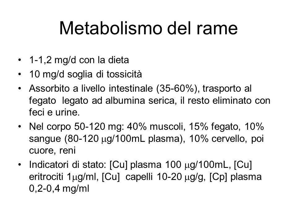 Metabolismo del rame 1-1,2 mg/d con la dieta 10 mg/d soglia di tossicità Assorbito a livello intestinale (35-60%), trasporto al fegato legato ad albumina serica, il resto eliminato con feci e urine.