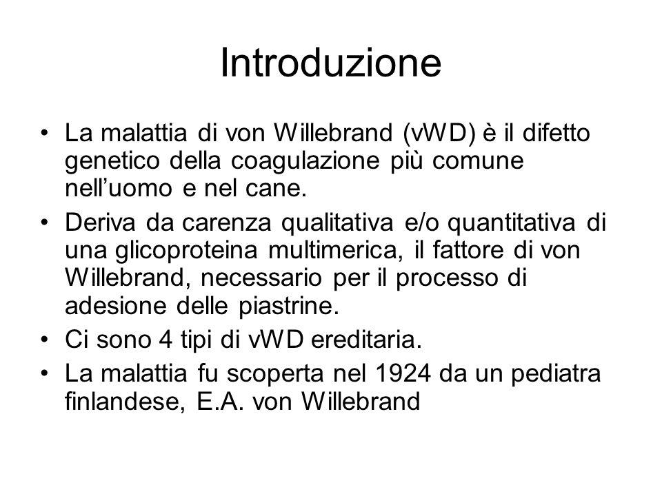 Introduzione La malattia di von Willebrand (vWD) è il difetto genetico della coagulazione più comune nelluomo e nel cane. Deriva da carenza qualitativ