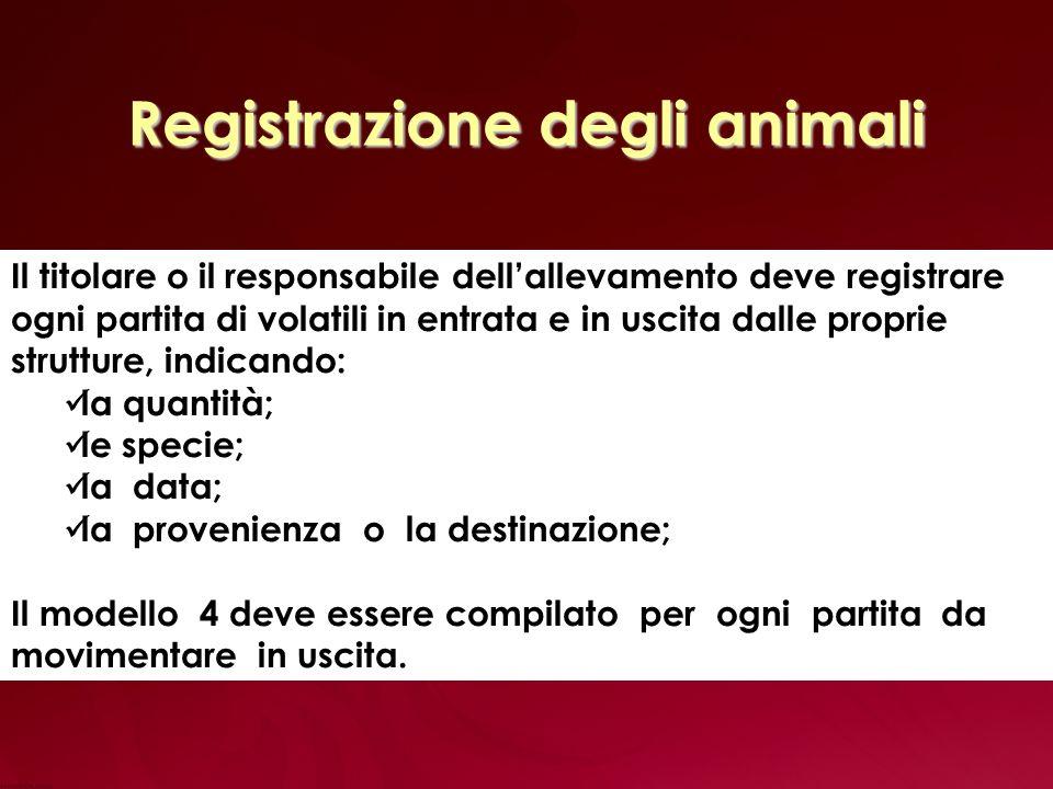 Altri elementi sottoposti a Rintracciabilità Oltre agli animali, sono considerati approvvigionamenti critici ai fini della rintracciabilità: gli alimenti per animali; i biocidi (detergenti, disinfettanti, disinfestanti); i farmaci veterinari.