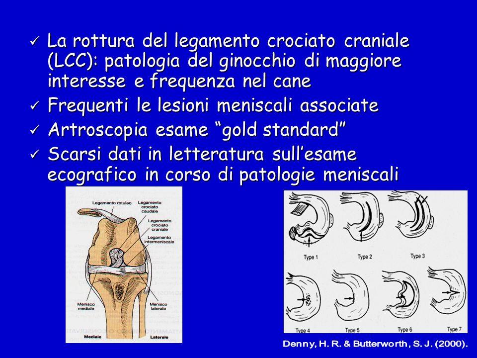 La rottura del legamento crociato craniale (LCC): patologia del ginocchio di maggiore interesse e frequenza nel cane La rottura del legamento crociato
