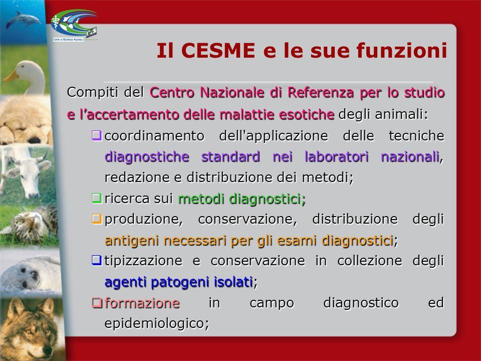 CESME Decreto del Ministero della Sanità- Maggio 1991 Inizio dellattività del centro di referenza nazionale per le malattie esotiche Decreto del Minis