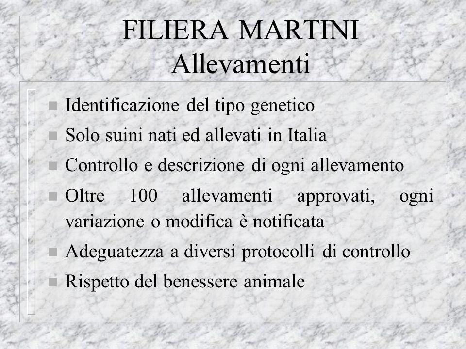 FILIERA MARTINI Allevamenti n Identificazione del tipo genetico n Solo suini nati ed allevati in Italia n Controllo e descrizione di ogni allevamento