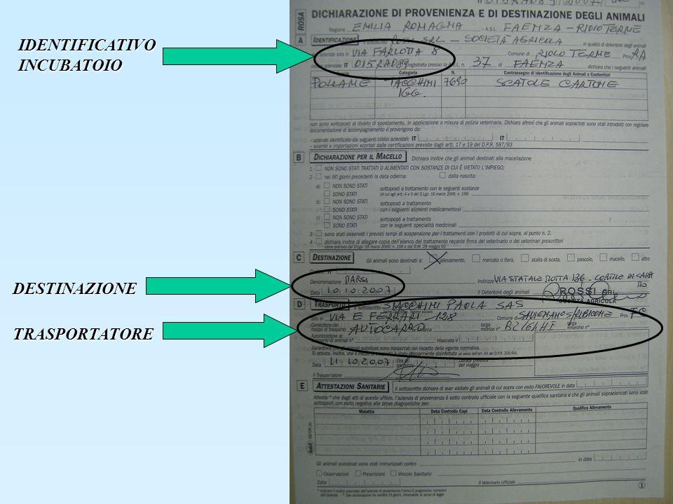 IDENTIFICATIVO INCUBATOIO TRASPORTATORE DESTINAZIONE