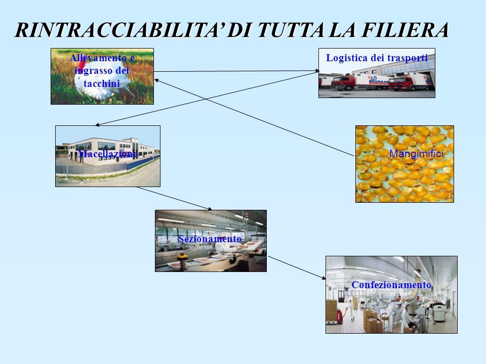 Mangimifici Allevamento e ingrasso dei tacchini Macellazione Sezionamento Confezionamento Logistica dei trasporti RINTRACCIABILITA DI TUTTA LA FILIERA