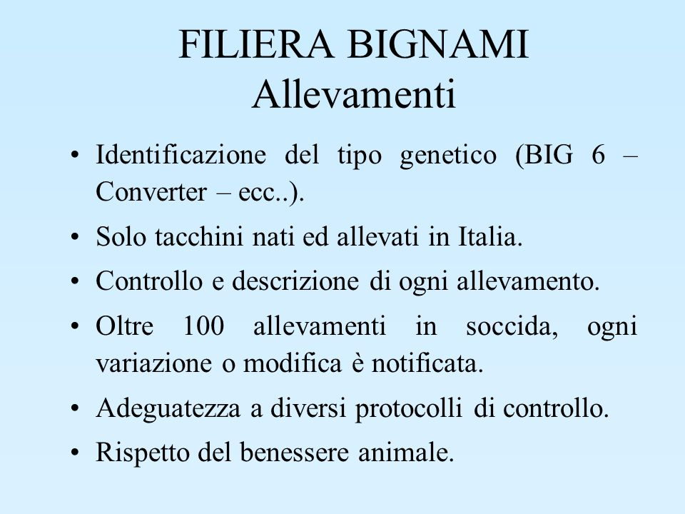 FILIERA BIGNAMI Allevamenti Identificazione del tipo genetico (BIG 6 – Converter – ecc..). Solo tacchini nati ed allevati in Italia. Controllo e descr