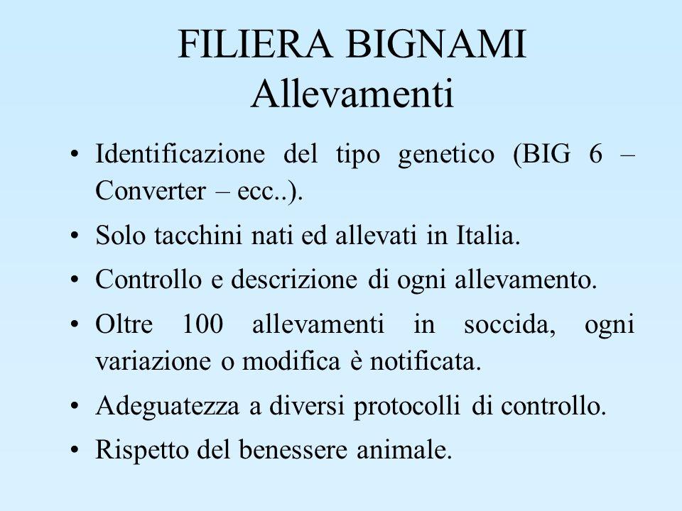 FILIERA BIGNAMI Allevamenti Identificazione dellallevamento Identificazione del Tecnico e del Veterinario incaricati.