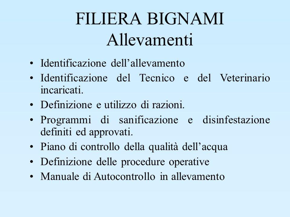 FILIERA BIGNAMI Allevamenti Identificazione dellallevamento Identificazione del Tecnico e del Veterinario incaricati. Definizione e utilizzo di razion
