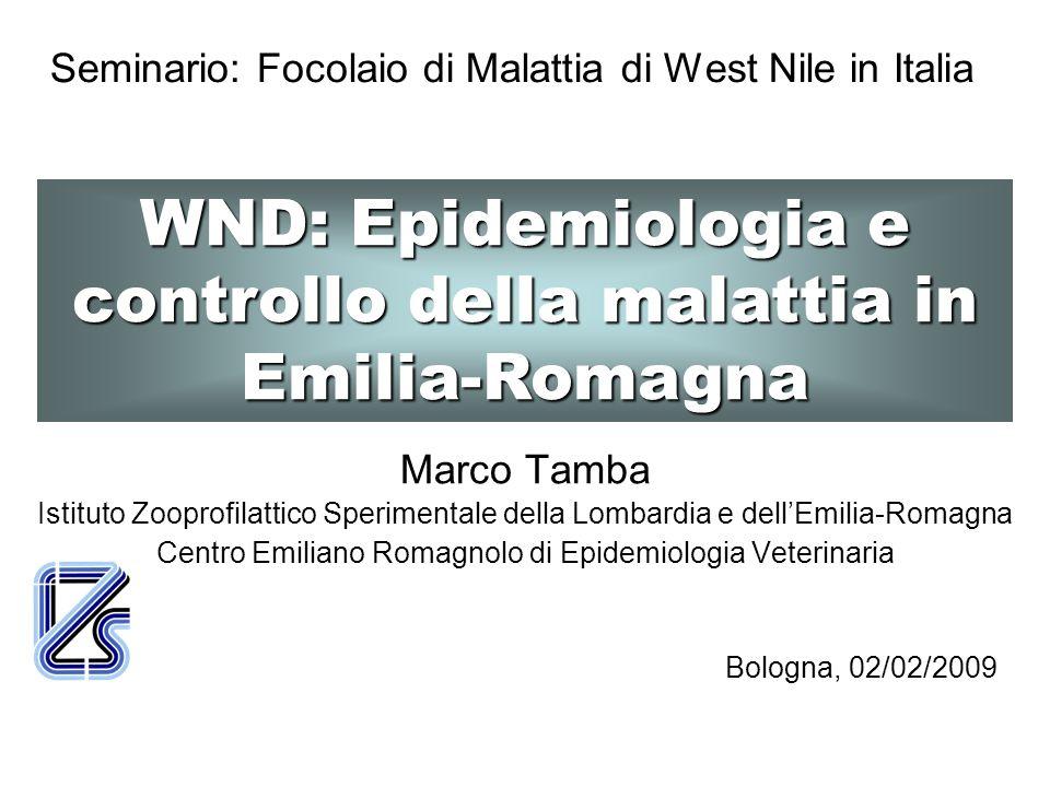 La WND nei cavalli e nelluomo rappresenta la fase finale dell epidemia nelle diverse popolazioni animali Zone di endemia in Africa Uccellimigratori Vettori(zanzare) Uccellistanziali Ospitirivelatori(cavallo,uomo)