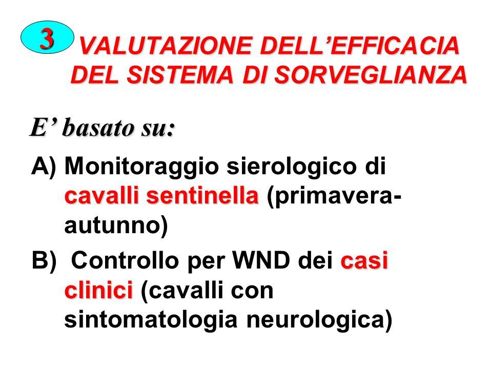 VALUTAZIONE DELLEFFICACIA DEL SISTEMA DI SORVEGLIANZA cavalli sentinella A)Monitoraggio sierologico di cavalli sentinella (primavera- autunno) casi clinici B) Controllo per WND dei casi clinici (cavalli con sintomatologia neurologica) 3 E basato su: