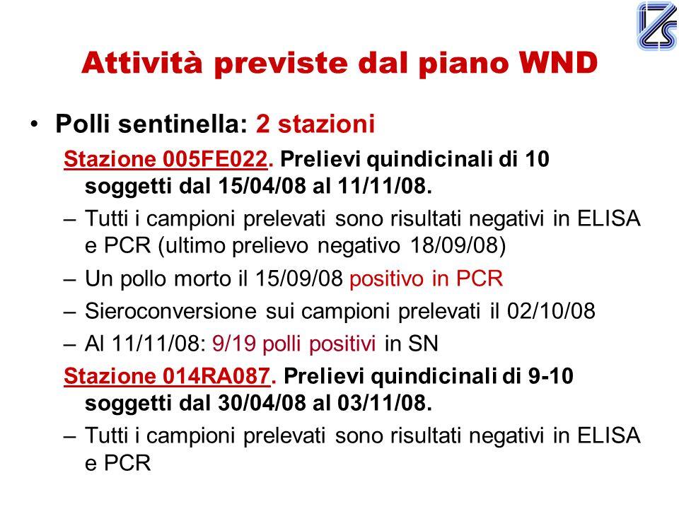 Attività previste dal piano WND Polli sentinella: 2 stazioni Stazione 005FE022. Prelievi quindicinali di 10 soggetti dal 15/04/08 al 11/11/08. –Tutti