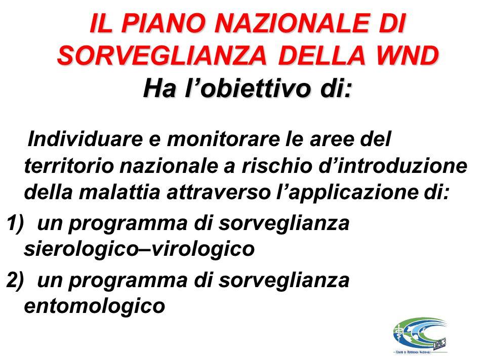 IL PIANO NAZIONALE DI SORVEGLIANZA DELLA WND Ha lobiettivo di: Individuare e monitorare le aree del territorio nazionale a rischio dintroduzione della