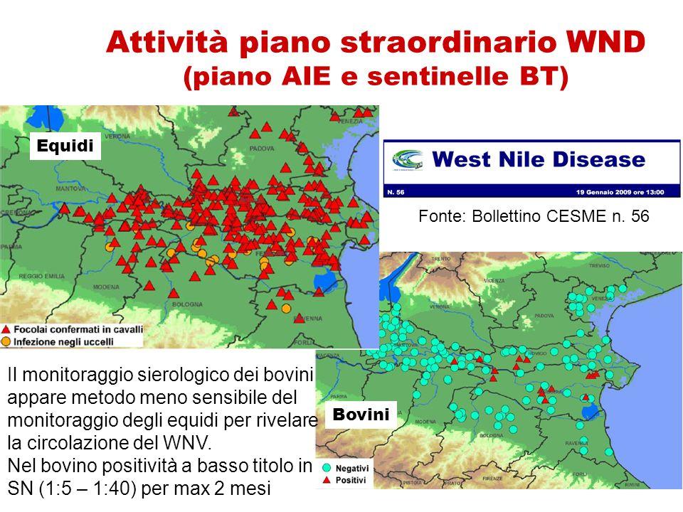 Attività piano straordinario WND (piano AIE e sentinelle BT) Bovini Il monitoraggio sierologico dei bovini appare metodo meno sensibile del monitoragg