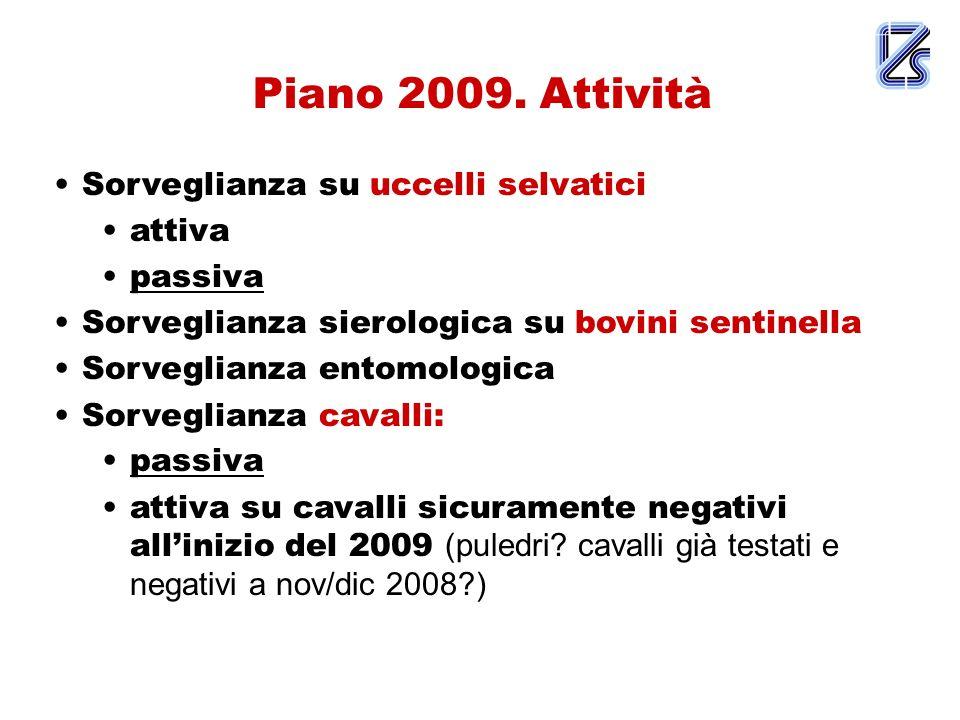 Piano 2009.