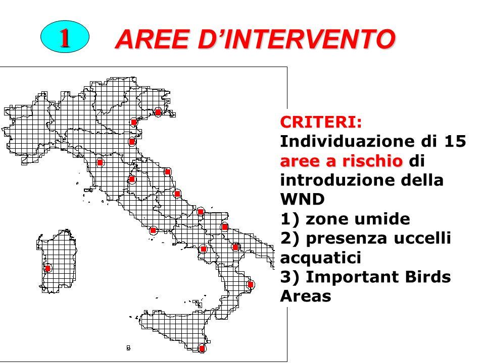 AREE DINTERVENTO 1 CRITERI: aree a rischio Individuazione di 15 aree a rischio di introduzione della WND 1) zone umide 2) presenza uccelli acquatici 3) Important Birds Areas