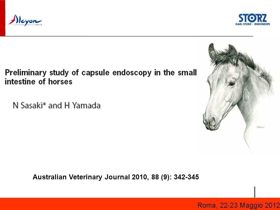 Australian Veterinary Journal 2010, 88 (9): 342-345