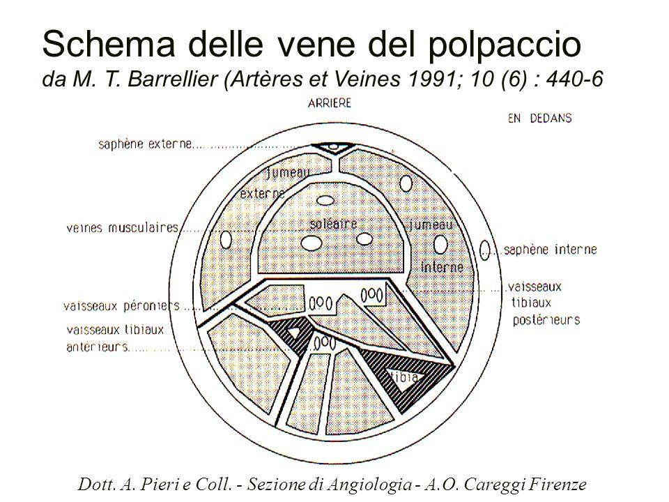 Schema delle vene del polpaccio da M. T. Barrellier (Artères et Veines 1991; 10 (6) : 440-6 Dott. A. Pieri e Coll. - Sezione di Angiologia - A.O. Care