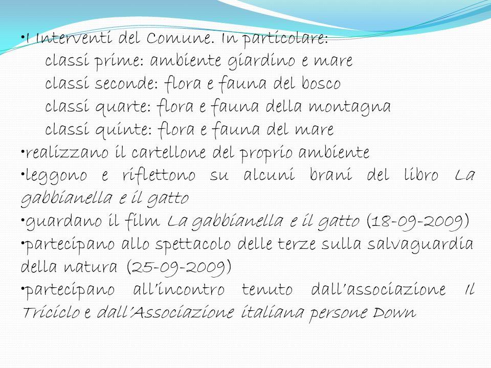 Corridoi Spazi esterni Cineteatro Loverini Aule Biblioteca degli alunni Anfiteatro Scuola Secondaria di 1° di Gandino Spazi