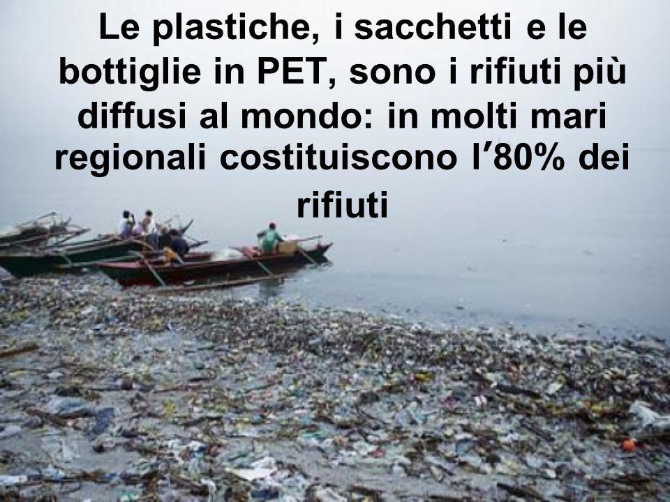 Le plastiche, i sacchetti e le bottiglie in PET, sono i rifiuti più diffusi al mondo: in molti mari regionali costituiscono l80% dei rifiuti