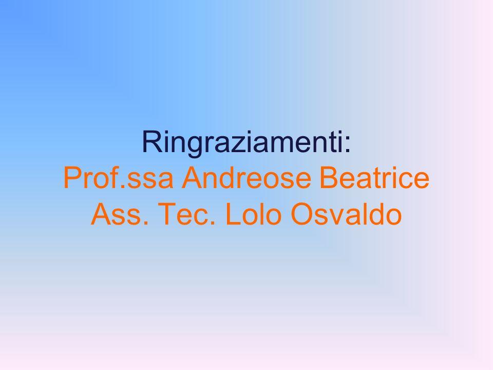 Ringraziamenti: Prof.ssa Andreose Beatrice Ass. Tec. Lolo Osvaldo